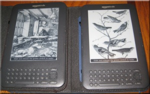 His and Her Kindles
