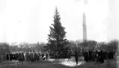 US National Christmas Tree 1923