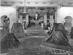 Carpet Salesroom
